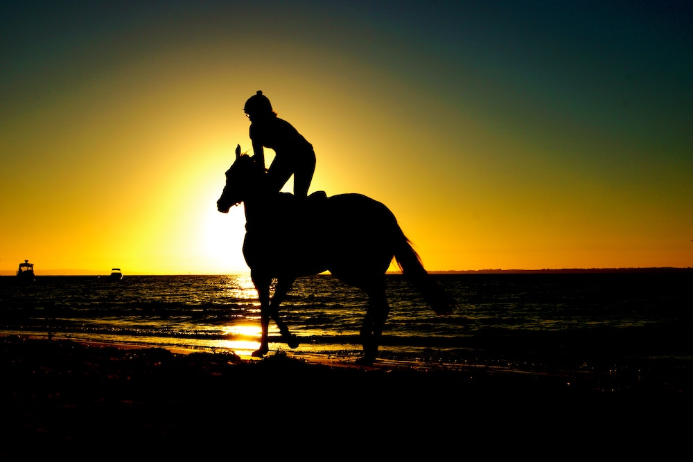 silhoutte of person riding a horse on the beach at sunset