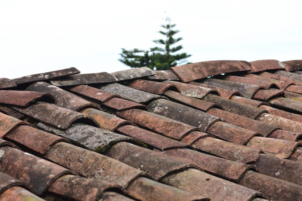 Roof tiles on a building