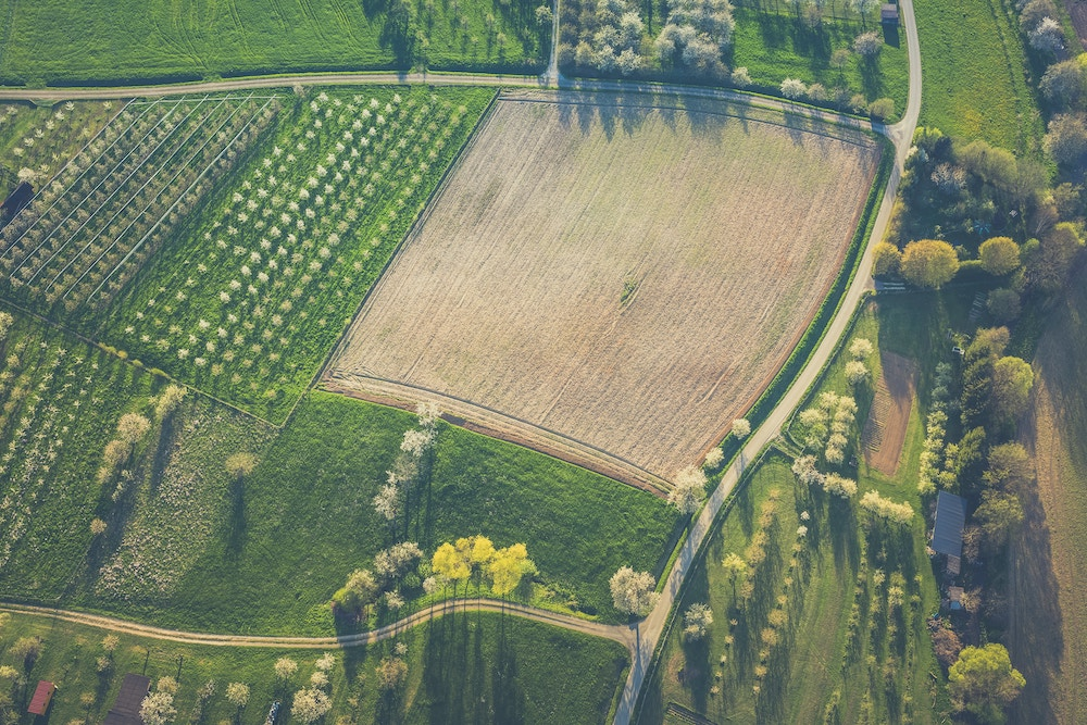 birds eye view of green fields farmland