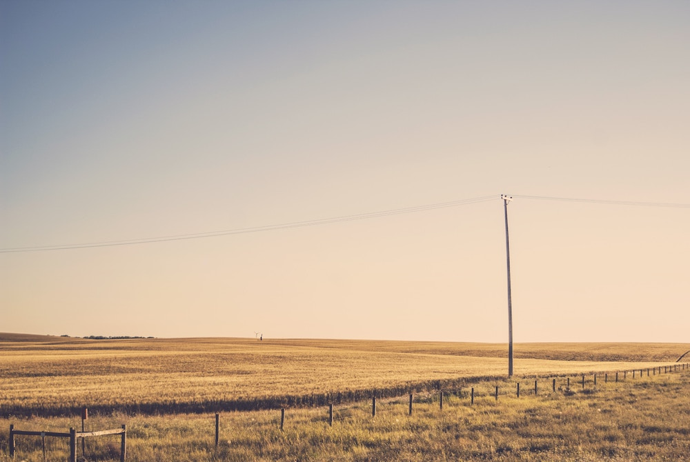 an open field with a telephone pole