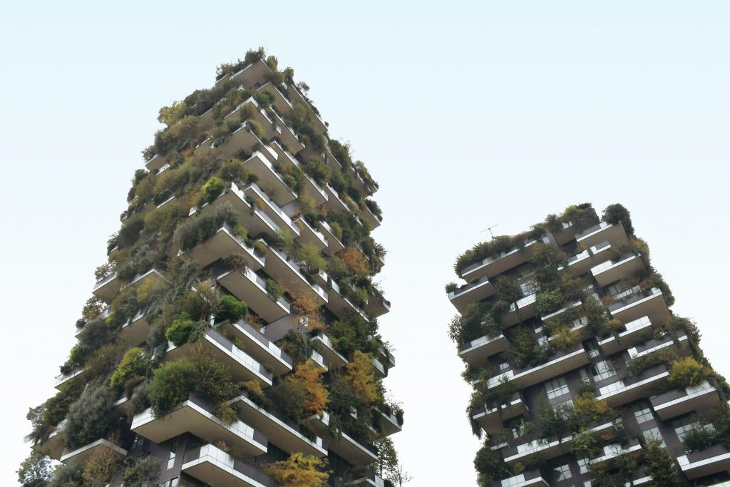 two buildings with plants growing from them