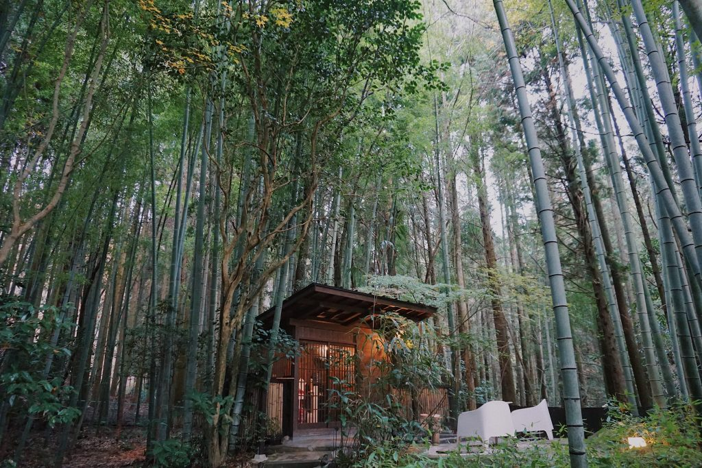 A bamboo building in a bamboo forest